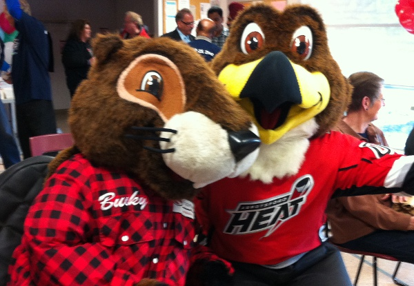 Bucky And Hawkey