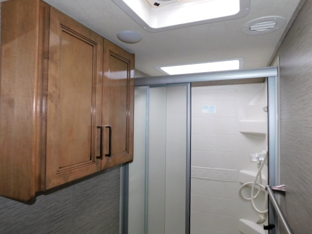 SHOWER with SKYLIGHT and LINEN CABINET
