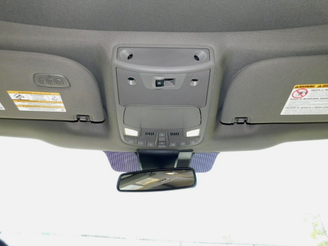 F350 FRONT CEILING